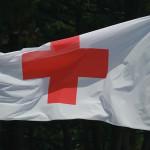 Organizar un evento: 150 años de Cruz Roja Española